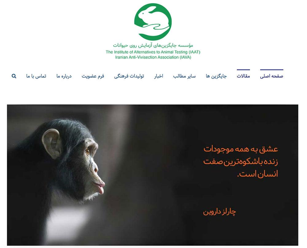 photo of the IAVA website
